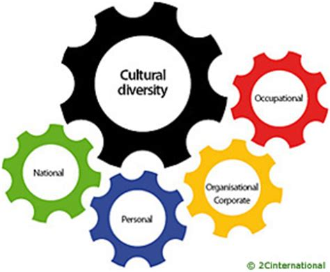 INSEAD Essay 3: Writing About Cultural Diversity The